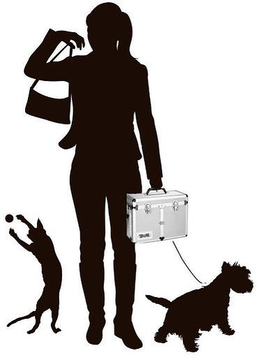 Authority Pets LLC  For The Entire Selection Of #1 All Systems Professional Pet Grooming Products