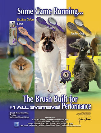 The new #1 All Systems Pin Brush is built for performance.