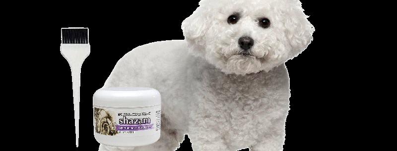 #1 All Systems Shazam Super Whitening Gel