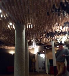 00_hotel-bonlieu-plafond_charles-meliere