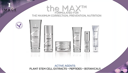 This exclusive facial supports skin's natural defense mechanisms and defends against cellular damage. It delivers unsurpassed protective measures against the effects of aging with a unique blend of plant derived stem cell technology and nutripeptides to help skin appear plumped.  Aging skin, lines and wrinkles due to facial expressions and sun exposure, tired and dull-looking skin will all benefit from a Max facial!!