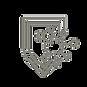 immunity-grey-icon.png