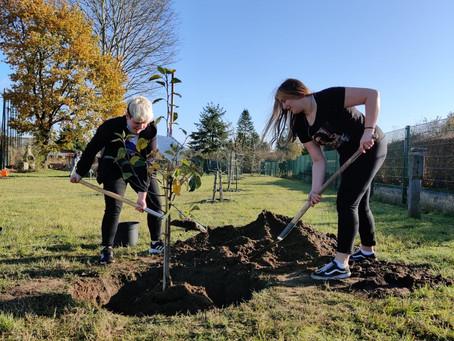 Zeichen setzen – Schulgartenkurs der Heinckeschule pflanzt Bäume