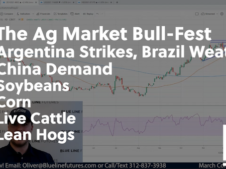 The Ag Market Bull-Fest with Soybeans a Tad below $13 | Argentina Strikes, China Demand, etc.