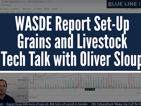 WASDE Report Set-Up | Grains and Livestock | Tech Talk with Oliver Sloup