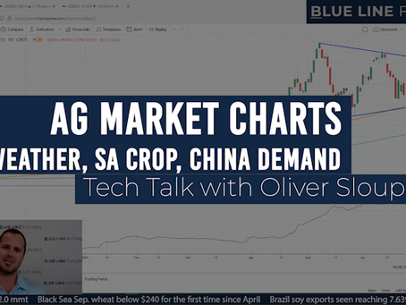 Are Grain Markets Set To Rally Again? | Tech Talk with Oliver Sloup