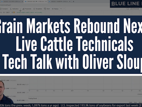 Will Grain Markets Rebound? | Live Cattle Technicals | Tech Talk with Oliver Sloup