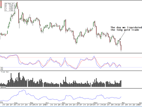 Gold/Silver: The Commodities you cannot ignore