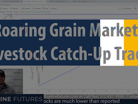 Roaring Grain Markets; Fastest China Purchase Pace since 1991; Livestock | Tech Talk - Oliver Sloup