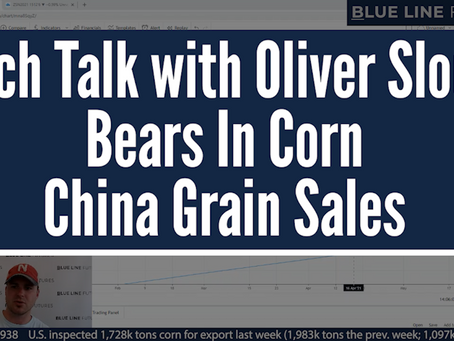 Bears In Corn | China Grain Sales | Tech Talk with Oliver Sloup