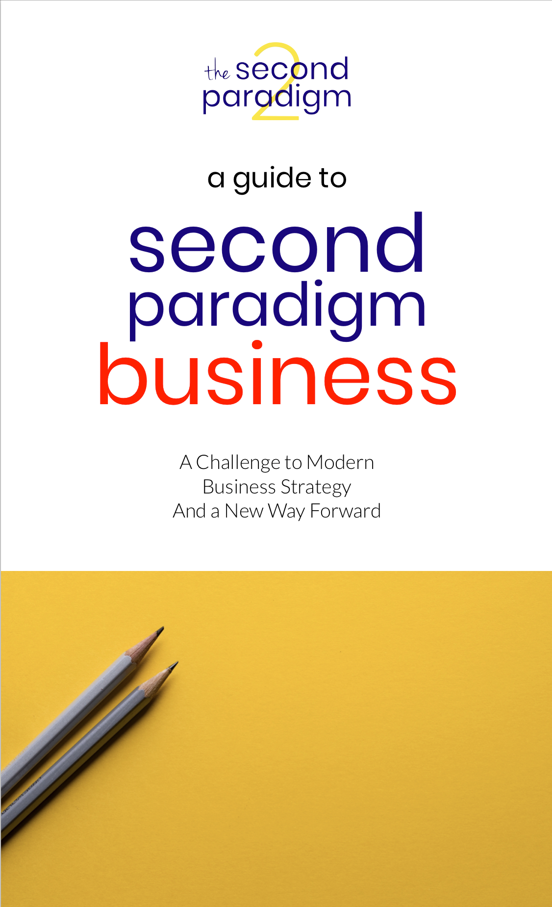 A Guide to Second Paradigm Business