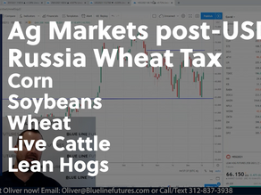 Ag Markets post-USDA with Oliver Sloup's Tech Talk | Russia Wheat Tax Rumors and More
