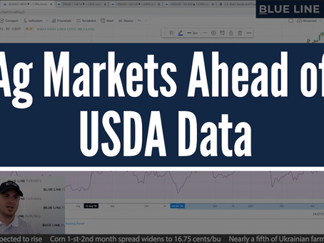 Ag Markets Ahead of USDA | Tech Talk with Oliver Sloup