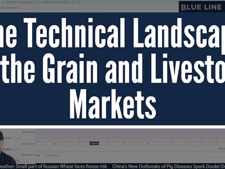 The Technical Landscape in the Grain and Livestock Markets | Tech Talk with Oliver Sloup