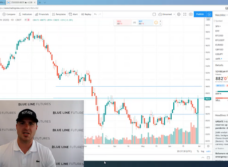 Tech Talk - the trade in corn and soybeans post USDA