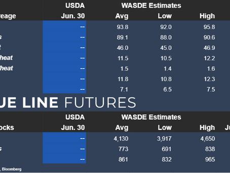 USDA's Acreage and Grain Stocks Estimates   06-30-2021