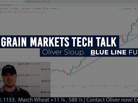 Grain Market Volatility with Record Managed Positions and Technical Triggers | Oliver Sloup