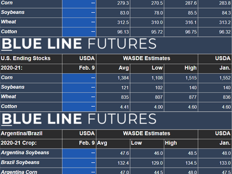 Are we Running Out of Grain? | WASDE Expectations, Technicals and More | Grain Express