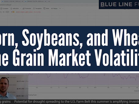 Corn, Soybeans, and Wheat - The Grain Market Volatility | Tech Talk with Oliver Sloup