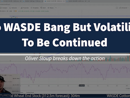 No WASDE BANG But Volatility To Be Continued | Tech Talk with Oliver Sloup