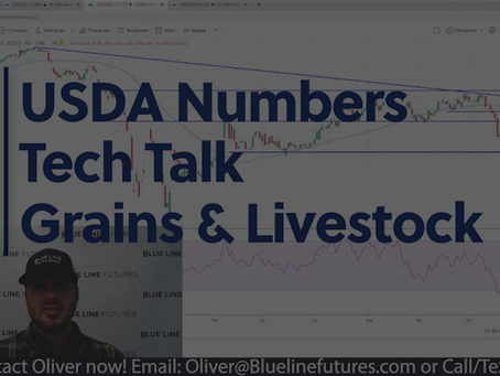 Big Moves in the Grains post-USDA and the most important Livestock action with Oliver Sloup