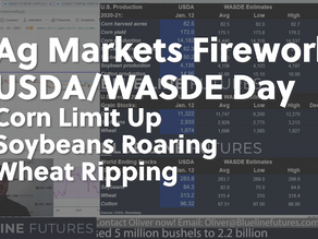 USDA/WASDE Day and Fireworks in the Ag Markets | Corn Limit Up | China, Argentina | Tech Talk