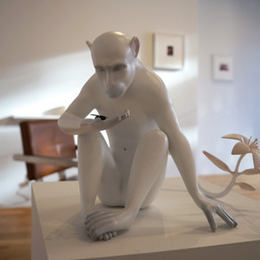 Monkey - Steven Rose