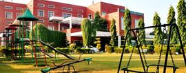 school-greenery_edited.jpg
