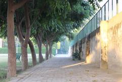 Golden Earth Global School, Sangrur Walk