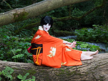 When the serious work is done: Geisha