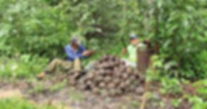 castana selva indigenas.jpg