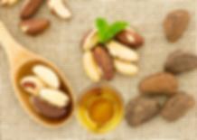 Brazil Nut Oil Paranussöl PARAoil Para F