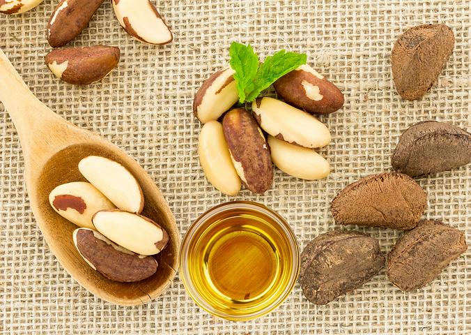 Paraořechový olej Brazil Nut Oil Paranus