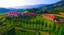 Momo Land Farm