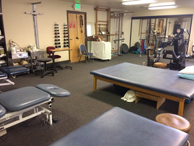 Physio Experience in California, Orthopedics and MSK Department, 2018