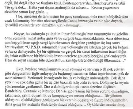 Pınar Selimoğlu Resmini İrdelerken
