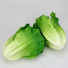 050-Simulation-of-lettuce-leaves-vegetab