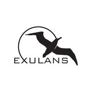 Exulans Logos-2.png