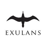 Exulans Logos-3.png