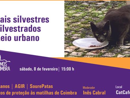 Somos Coimbra promove tertúlia sobre animais silvestres