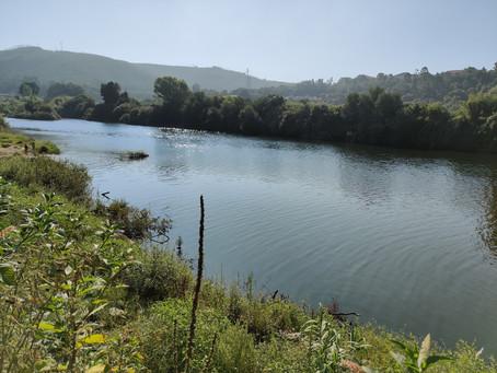 """""""Coimbra carece efetivamente de planos que promovam a aproximação da cidade ao rio"""""""