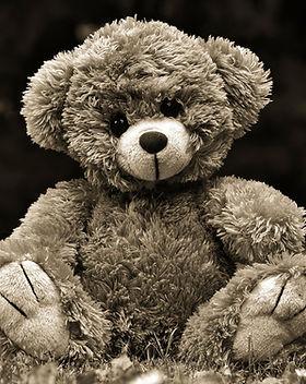 teddy-4294015_1920.jpg