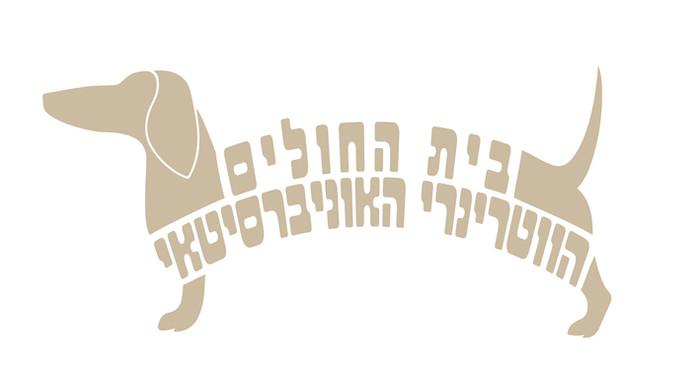 לוגו מאותיות