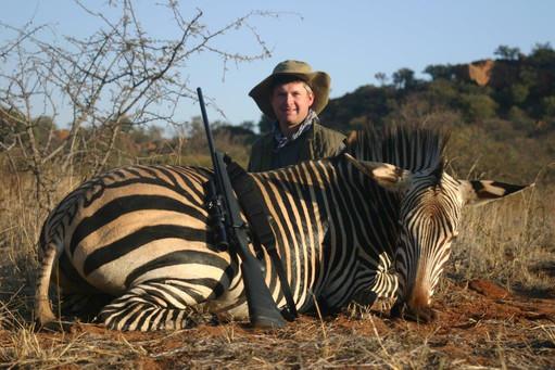 Burchell's Zebra Bull on Greater Kuduland