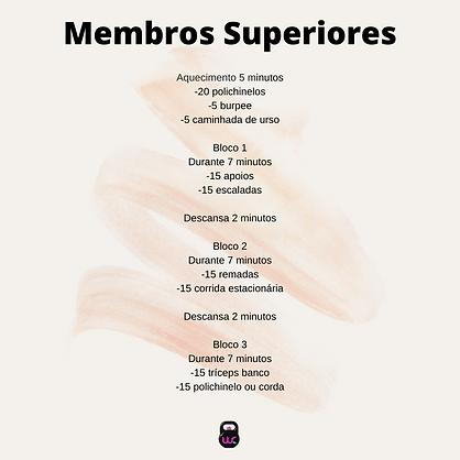 Membros Superiores.png