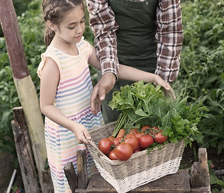 Child%20Carrying%20Vegetables_edited.jpg