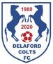 Delaford Colts FC 40th Anniversary 1980-2020