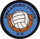 Delaford Colts Badge