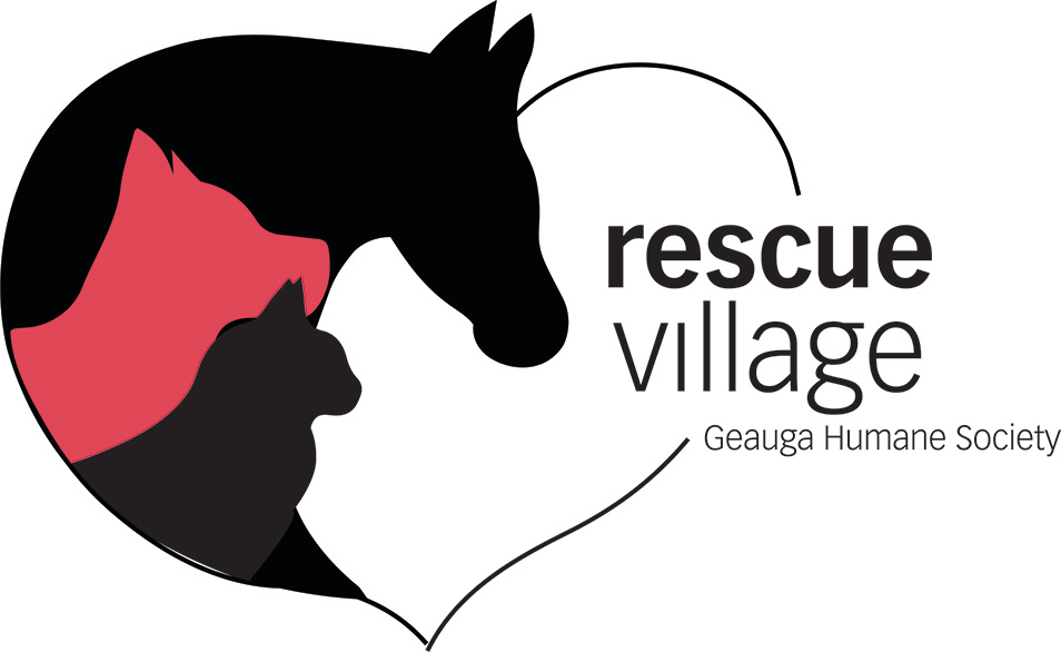 rescuevillageheartlogo