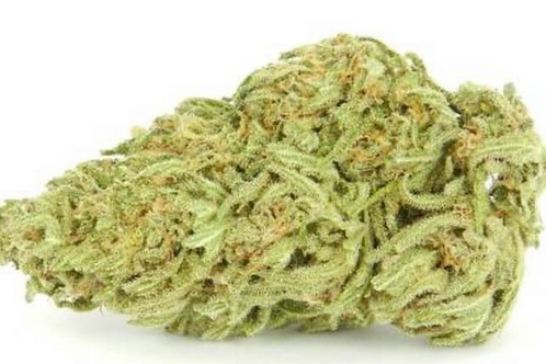 Sativa - Girl Scout Cookies